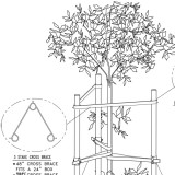 Three-stake tree staking system isometric model drawing